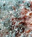 борьба с пылью